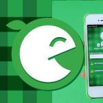E-food – aplikacja, którą powinieneś mieć
