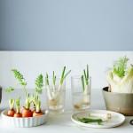 13 warzyw i owoców, które odrosną z resztek