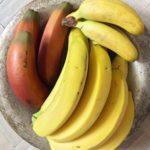 Banany – fakty i mity, czyli posyp solą, a wyjdą robaki