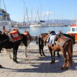 Perły Peloponezu: Wyspy Sarońskie, czyli wielkie greckie wakacje