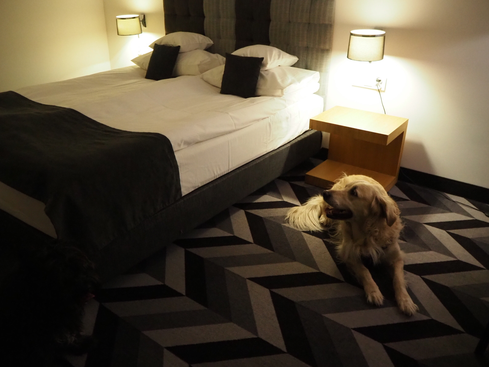 hotel poziom 511