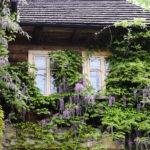 Lanckorona, czyli Miasto Aniołów – jedno z najbardziej romantycznych miejsc w Polsce