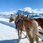 Alpe di Siusi – jedno z najlepszych miejsc na rodzinny wyjazd